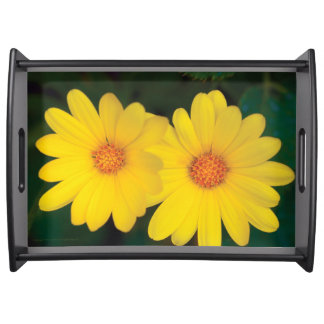 Yellow Daisies - Large Serving Tray