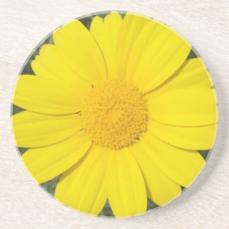Yellow Daisy coaster