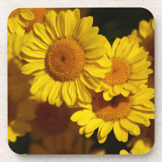 Yellow Daisy Flower Cork Coaster