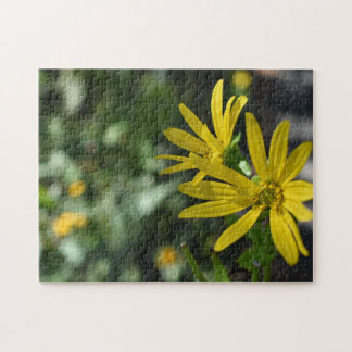 Yellow Daisy Flower Floral Nature Photography Jigsaw Puzzle