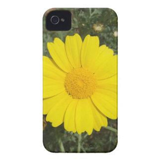 Yellow Daisy iPhone 4 Case-Mate