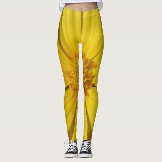Yellow Daisy Leggings