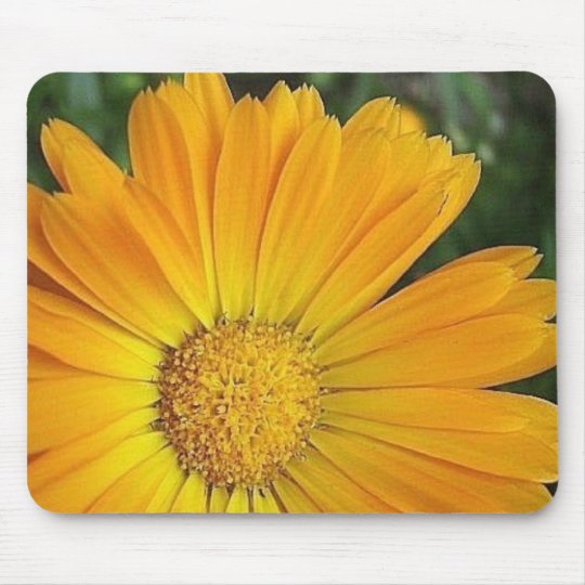Yellow Daisy Mouse Pad