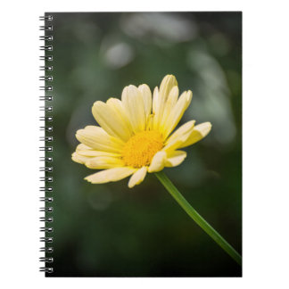 Yellow daisy notebook