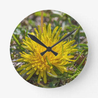 yellow dandelion round clock