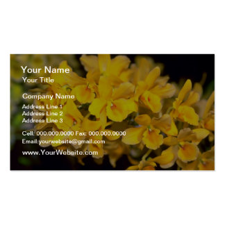 yellow Dendrobium flowers Business Card Template