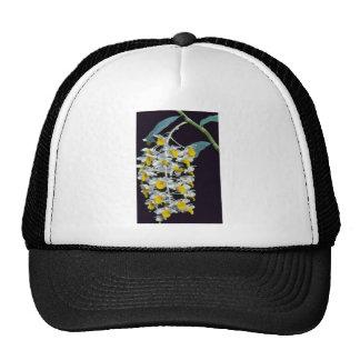 Yellow Densiflorum (Dendrobium) flowers Trucker Hat