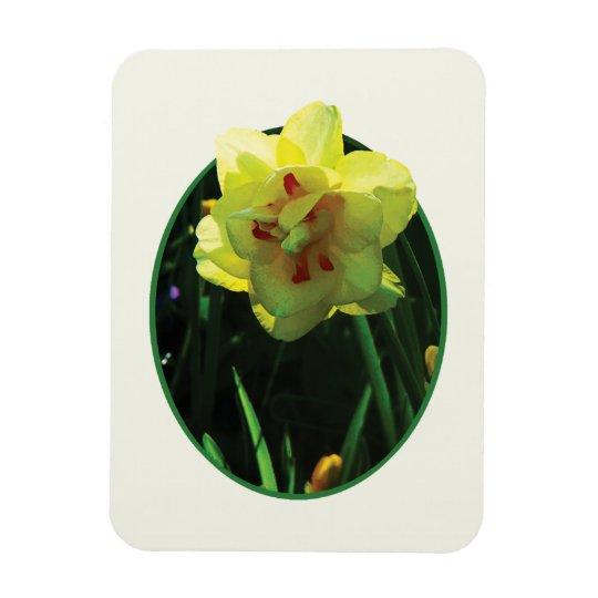 Yellow Double Daffodil Rectangular Photo Magnet
