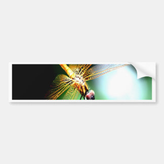 yellow dragonfly peace joy bumper stickers