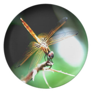 yellow dragonfly peace joy party plate