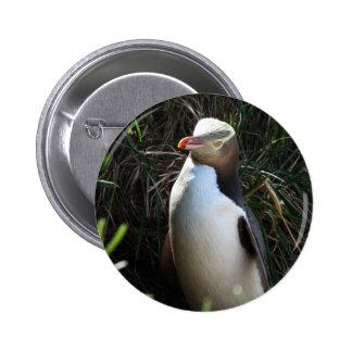 Yellow Eyed Penguin 6 Cm Round Badge