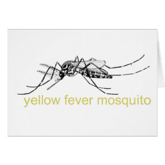 Yellow Fever Mosquito Greeting Card