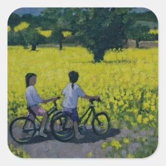 Yellow Field Kedleston Derby Square Sticker
