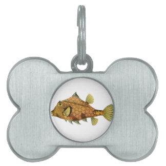 Yellow Fish Pet Tag