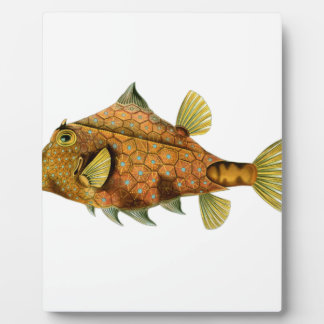 Yellow Fish Plaque