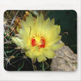 Yellow fishhook cactus flower mouse mat