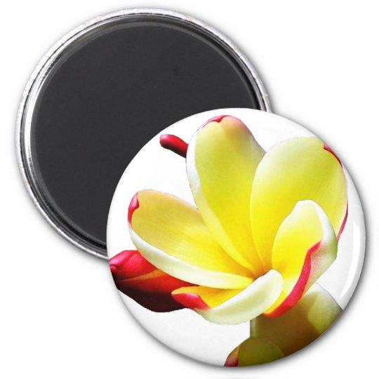Yellow Flower 2 6 Cm Round Magnet