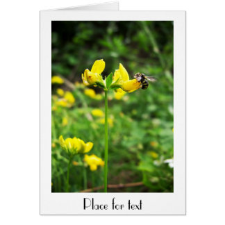 Yellow Flower and Wasp close up macro shoot photo Note Card