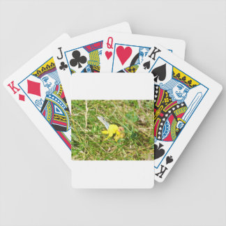Yellow Flower Blue Butterfly Bicycle Playing Cards
