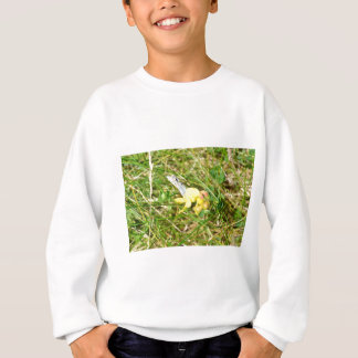 Yellow Flower Blue Butterfly Sweatshirt