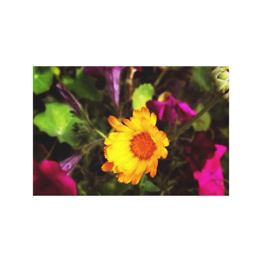 Yellow flower circled in purple canvas prints