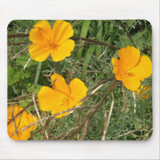 Yellow Flower Garden Close-Up Mouse Pad