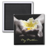 Yellow Flower In Hands For Mother
