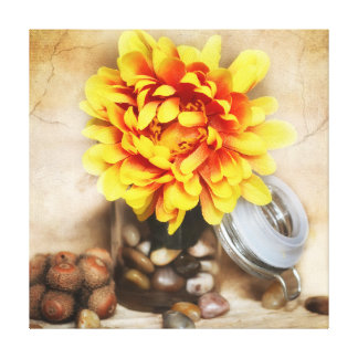 Yellow Flower in Pot with Pebbles Canvas Print