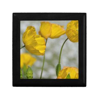 Yellow flower magic gift box