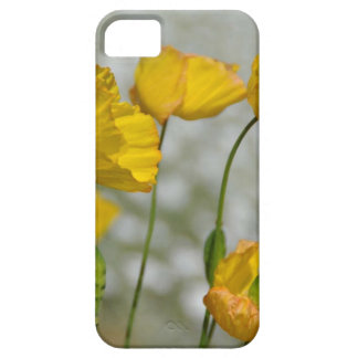 Yellow flower magic iPhone 5 cases