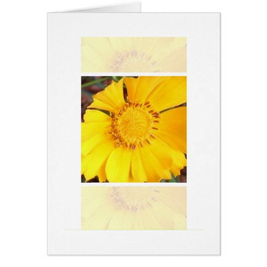 Yellow Flower - note card