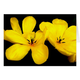 Yellow Flower Notecard Note Card