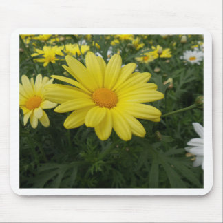 Yellow Flower of Love Mouse Pads