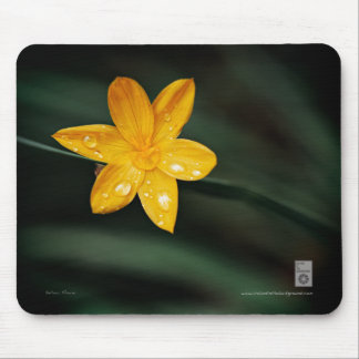Yellow Flower & Rain Drops Mouse Pad