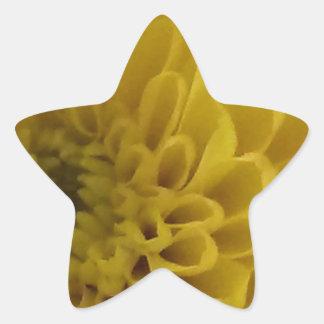 Yellow Flower Star Sticker