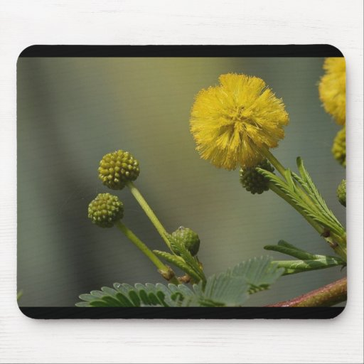 Yellow Flowers In Green Grass Macro Image Mouse Pads
