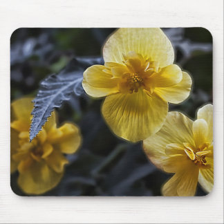 Yellow Flowers Mousepad