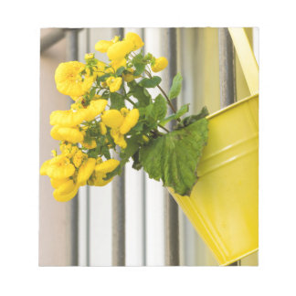 yellow flowers on the balcony notepad