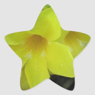 Yellow Flowers Star Sticker