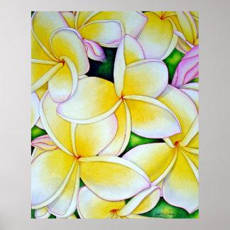 Yellow Frangipani Poster