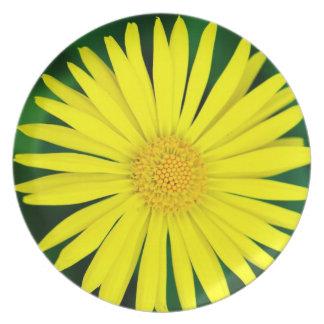 Yellow Fresh Sunflower Nature Bright Dinner Plate