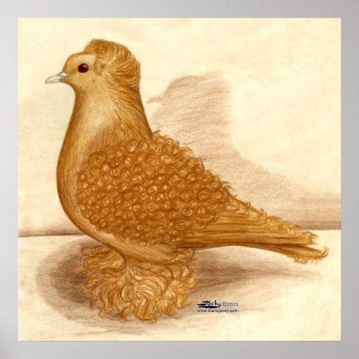Yellow Frillback Pigeon Print