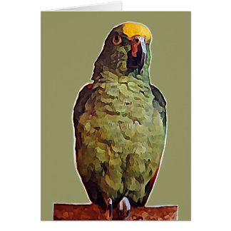 Yellow Fronted Amazon Parrot Card