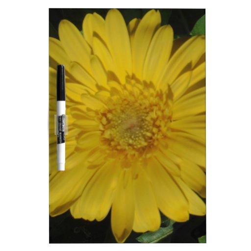 Yellow Gerber / Gerbera Daisy Dry-Erase Whiteboards
