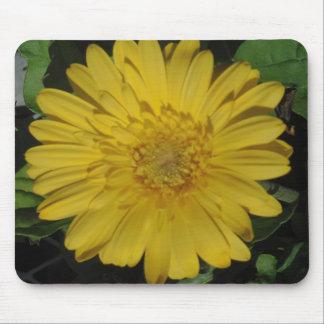 Yellow Gerber Gerbera Daisy Mouse Pad