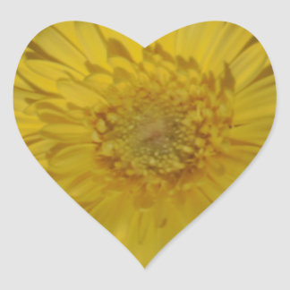 Yellow Gerber / Gerbera Daisy Stickers