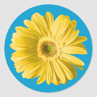 Yellow Gerbera Daisy Flower Classic Round Sticker