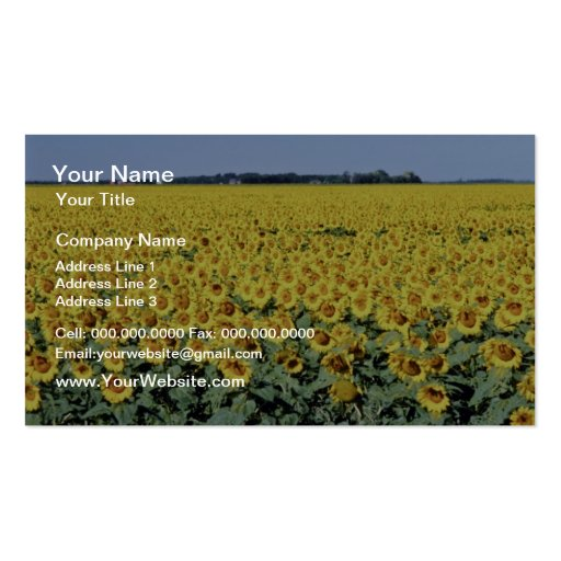 yellow Golden field of sunflowers, Manitoba flower Business Cards