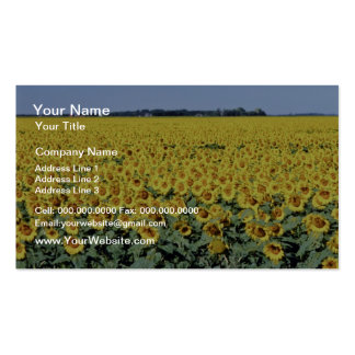 yellow Golden field of sunflowers, Manitoba flower Pack Of Standard Business Cards