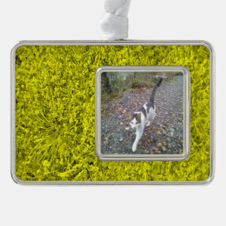 Yellow Grass Silver Plated Framed Ornament
